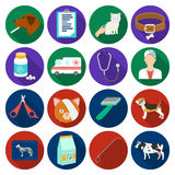 Veterinary clinic set icons in flat style. Big collection of veterinary clinic vector symbol stock illustration Royalty Free Stock Photography