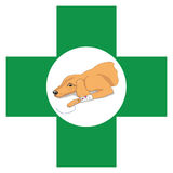 Veterinary cross sign with image of recovering dog stock photos