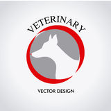 Veterinary Stock Photos