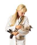 Veterinary doctor Royalty Free Stock Photography