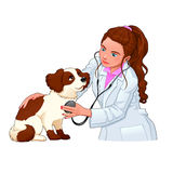 Veterinary with dog. Royalty Free Stock Photography
