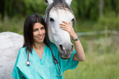 Veterinary on a farm Stock Image
