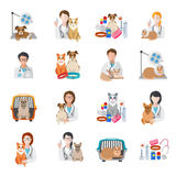 Veterinary Icon Flat Stock Image