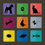 Veterinary Icons with pets. Veterinary Icons with pets and their toys Royalty Free Stock Photo