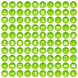 100 veterinary icons set green. 100 veterinary icons set in green circle isolated on white vectr illustration Vector Illustration