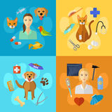 Veterinary icons set. Vector veterinary icons set. Cat dog fish parrot doctors pets medical tools Royalty Free Stock Photos