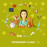 Veterinary icons set. Vector veterinary icons set, concept and poster. Cat dog fish parrot doctors pets medical tools Royalty Free Stock Image