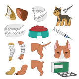 Veterinary illustrations Royalty Free Stock Photos