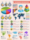 Veterinary infographic set Stock Photo