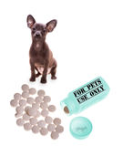 Veterinary medicine Royalty Free Stock Photography