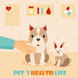 Veterinary medicine hospital, doctor with cute dog and rabbit. Health care for domestic animals. Veterinary medicine hospital, clinic for animals. Doctor with Stock Photo