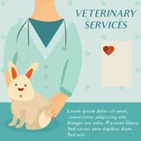 Veterinary medicine hospital, doctor with cute rabbit. Health care or treatment for wild or domestic animals. Veterinary medicine hospital, clinic for animals Royalty Free Stock Photography