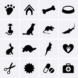 Veterinary Pet Icons Stock Photo