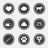 Veterinary, pets icons. Dog paw, syringe signs. Royalty Free Stock Image