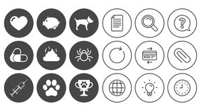 Veterinary, pets icons. Dog paw, syringe signs. Royalty Free Stock Photos