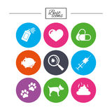 Veterinary, pets icons. Dog paws, syringe signs. Royalty Free Stock Images