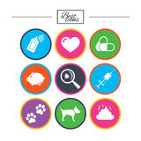 Veterinary, pets icons. Dog paws, syringe signs. Royalty Free Stock Photos