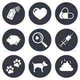 Veterinary, pets icons. Dog paws, syringe signs stock illustration