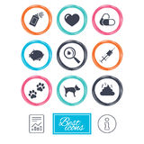 Veterinary, pets icons. Dog paws, syringe signs. Stock Image
