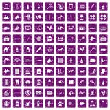 100 veterinary related icons set grunge purple. 100 veterinary icons set in grunge style purple color isolated on white background vector illustration Royalty Free Stock Image