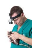Veterinary surgeon Royalty Free Stock Image