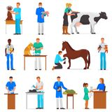 Veterinary vector veterinarian doctor man or woman treating pet patients cat or dog illustration set of vet people with royalty free illustration