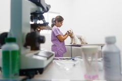 Free Veterinary Visit In Clinic With Vet And Sick Dog Stock Photography - 106395222