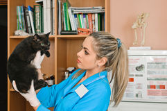 Veterinary Woman Royalty Free Stock Photos