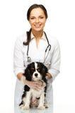 Veterinary woman with spaniel Royalty Free Stock Photos