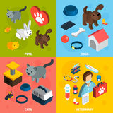 Veterinär- isometrisk uppsättning för husdjur Arkivfoto