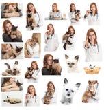 Veterinär- manipulera Fotografering för Bildbyråer