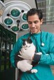 Veterinär- tagande omsorg av husdjuret Arkivfoton