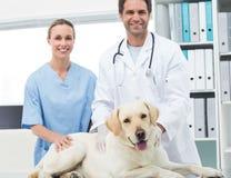 Veterinärer med hunden i klinik Royaltyfria Foton