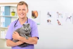 Veterinário positivo que examina um gato Foto de Stock Royalty Free