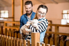 Veternians with baby goat Royalty Free Stock Photo
