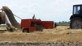 Veteskördsammanslutning som lastar av vete in i en traktorsläp under skörd arkivfilmer