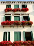 Vetetian windows Stock Photography