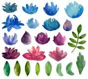 Vetor abstrato das flores da aquarela Imagem de Stock