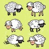 Vetor ajustado com carneiros bonitos EPS10 Imagens de Stock Royalty Free
