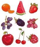 Vetor ajustado com frutos e bagas: vermelho, roxo e laranja Imagens de Stock