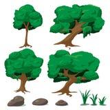 Vetor ajustado da ilustração de Forest Tree Cartoon ilustração royalty free