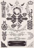 Vetor ajustado: elementos caligráficos do projeto ilustração stock