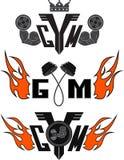 Vetor ajustado: gym Fotografia de Stock