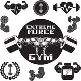 Vetor ajustado: gym Foto de Stock Royalty Free