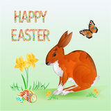 Vetor alegre do coelho da mola da Páscoa feliz Foto de Stock