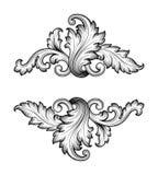 Vetor barroco do ornamento do rolo do quadro do vintage Fotografia de Stock Royalty Free