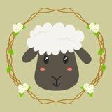 Vetor bonito dos carneiros Fotografia de Stock