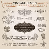 Vetor caligráfico da fita do vintage dos elementos Foto de Stock Royalty Free
