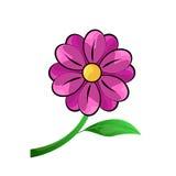 Vetor cor-de-rosa da flor ilustração stock