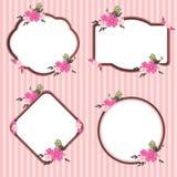 Vetor cor-de-rosa do quadro da flor Imagem de Stock